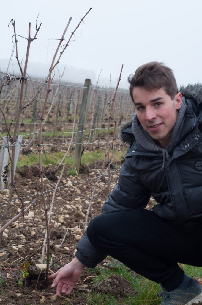 Discovering Lucas Fays, from Champagne Philippe Fays